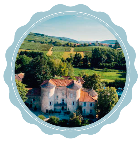 Château dos Vinhedos | Mâcon Area