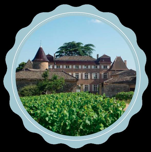 Château dos Vinhedos